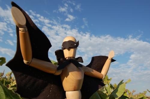 I am Zorro-kin