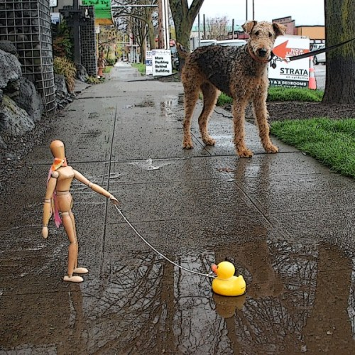 Startled dog meets duck on a walk with Emotikin