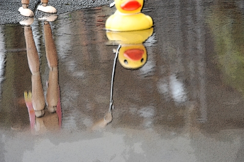 Rubber ducky reflections on a rainy Sunday in Seatle