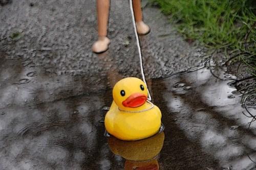 Rubber ducky on a West Seattle sidewalk